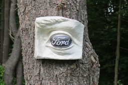 """Ford"" in the Wood, 2013"